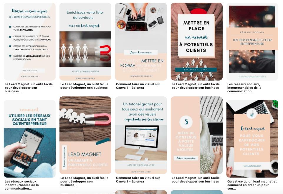 Exemples de visuels Pinterest Epionea